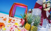 Тропически нотки за летните сватби с Брилянтин
